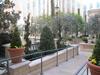 Vegas2011-0046