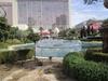 Vegas2011-0147