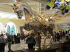 Vegas2011-0148